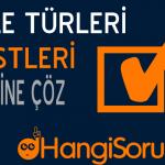 8. Sınıf Türkçe Cümle Türleri Testleri Çöz