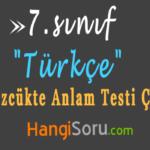 7. Sınıf Sözcükte Anlam Testi Çöz